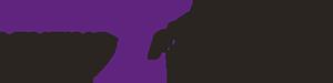 Lenzing Instruments Logo
